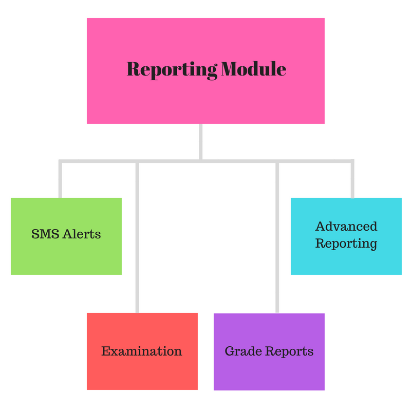 School Software Reporting Module